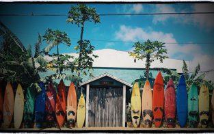 JS's shortboards